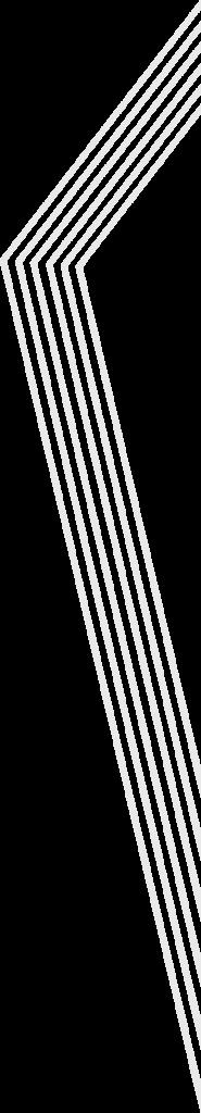 Architectes Associes stripes 2